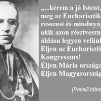 Éljen az Eucharisztikus Kongresszus! Éljen Mária országa! Éljen Magyarország!