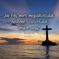 Döntések-Istené vagy-Ki mint vet, úgy arat-Légy figyelmes a gyengékkel!-Mutassátok ki szereteteteket egymás felé!-Te csak hajts, és engedd, hogy Isten rendezzen!-Úgy döntött, hogy téged ment meg!