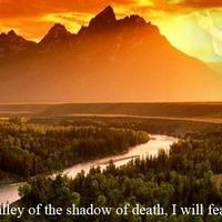 Jézus nevetett-Kényelmetlen területeken keresztül vezet az út a csodához