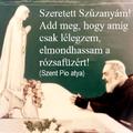 Szeretett Szűzanyám! Add meg, hogy amíg csak lélegzem, elmondhassam a rózsafüzért! (Szent Pió)