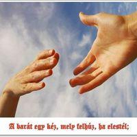 Egy nagyszerű apa jellemvonásai-Légy hűséges barát!-Vitaminok a lelki egészséghez