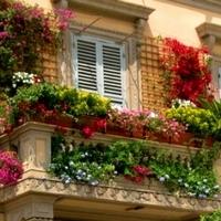 Kertészkedj panelben!