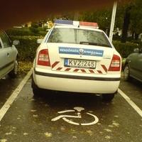 Vajon miért ide parkolt?
