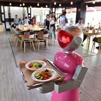 Az üzletfejlesztés joga - Személyiségi jogokkal és kötelezettségekkel ruháznák fel a robotokat