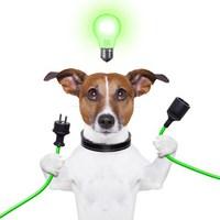 Az ön cége innovatív? Innovációs Audit és INNDEX