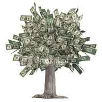 Rázd meg te is a pénztermő fát - Félmilliárd vár rád Nyugat-Dunántúlon