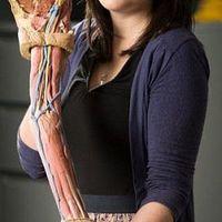 Termékfejlesztés 3D nyomtatással: leegyszerűsítheti az anatómiai oktatást is