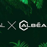 Innovációs partnerség a L'Oréal és az Albéa között - Innovatív fenntarthatósági törekvések