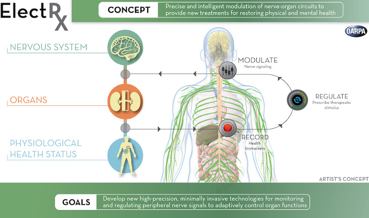 DARPA-self-healing.jpg