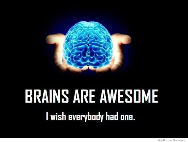brains-are-awesome.jpg