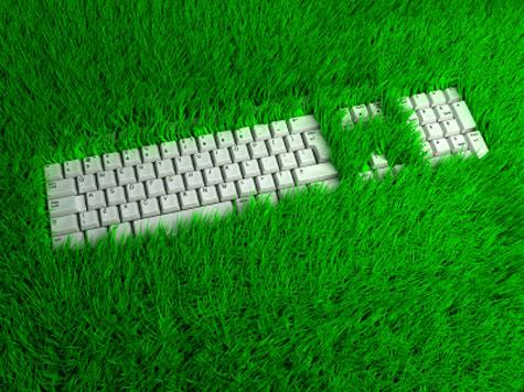 green-office.jpg
