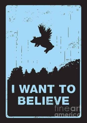 i-want-to-believe-budi-satria-kwan.jpg