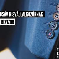 Gyorsítósáv kisvállalkozóknak: Revizor