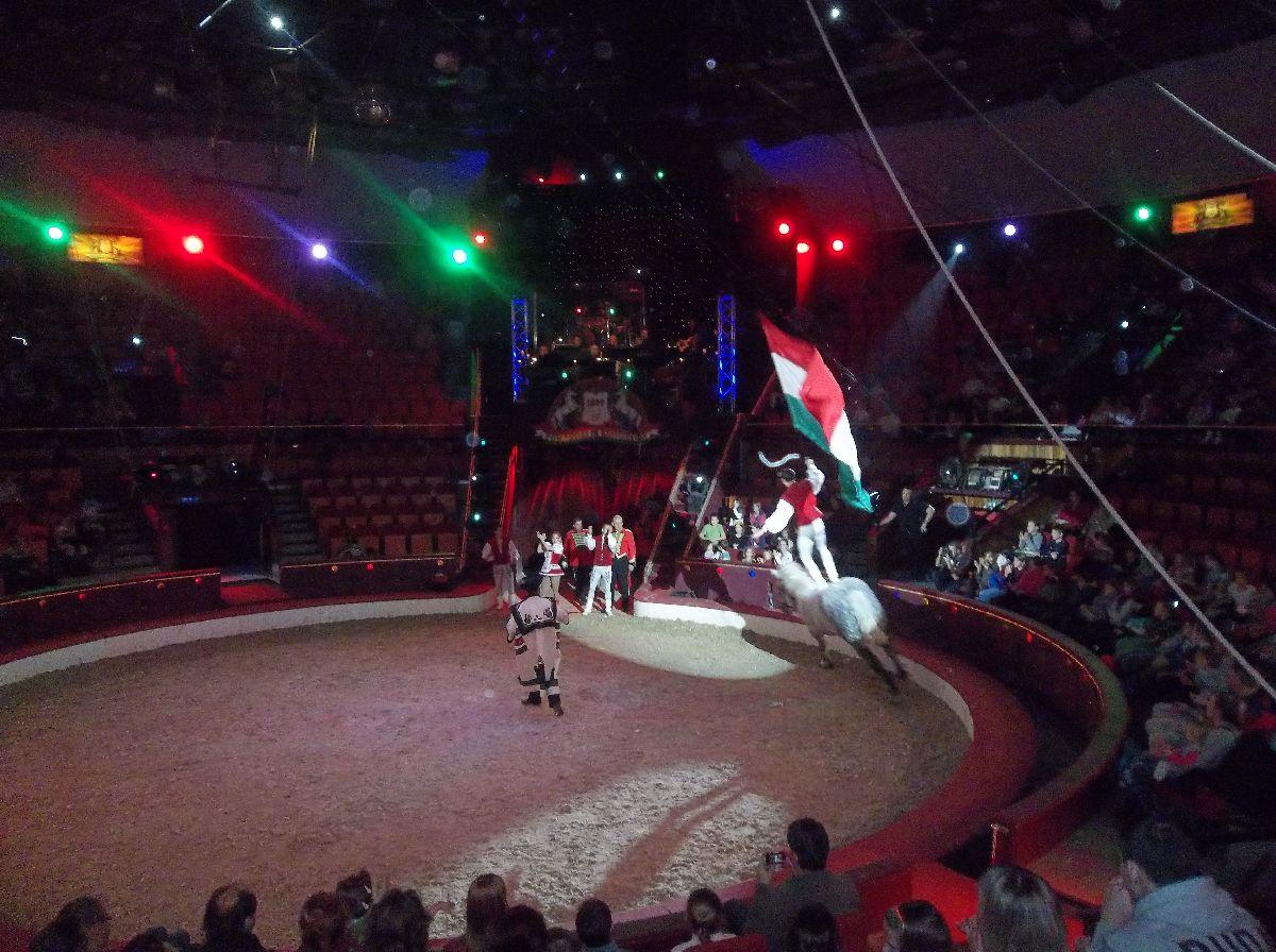 cirkusz008.jpg