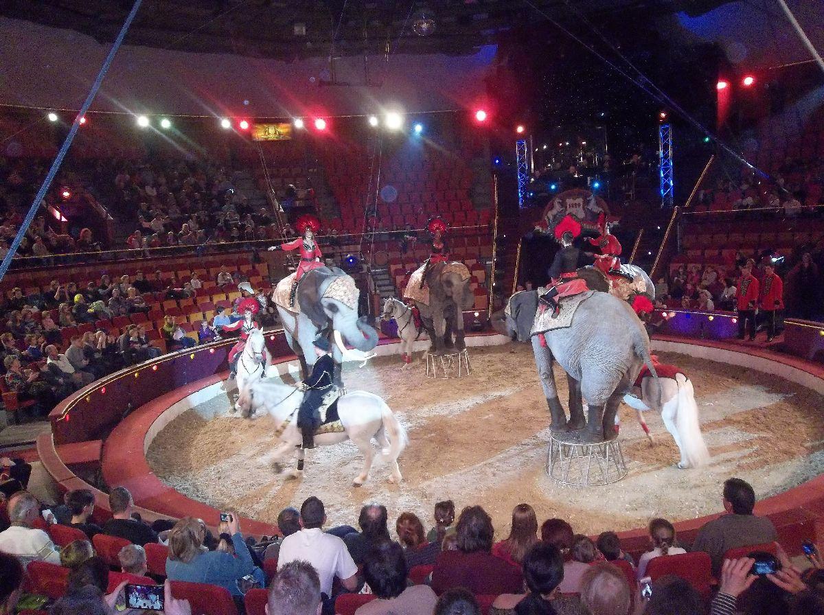 cirkusz010.jpg