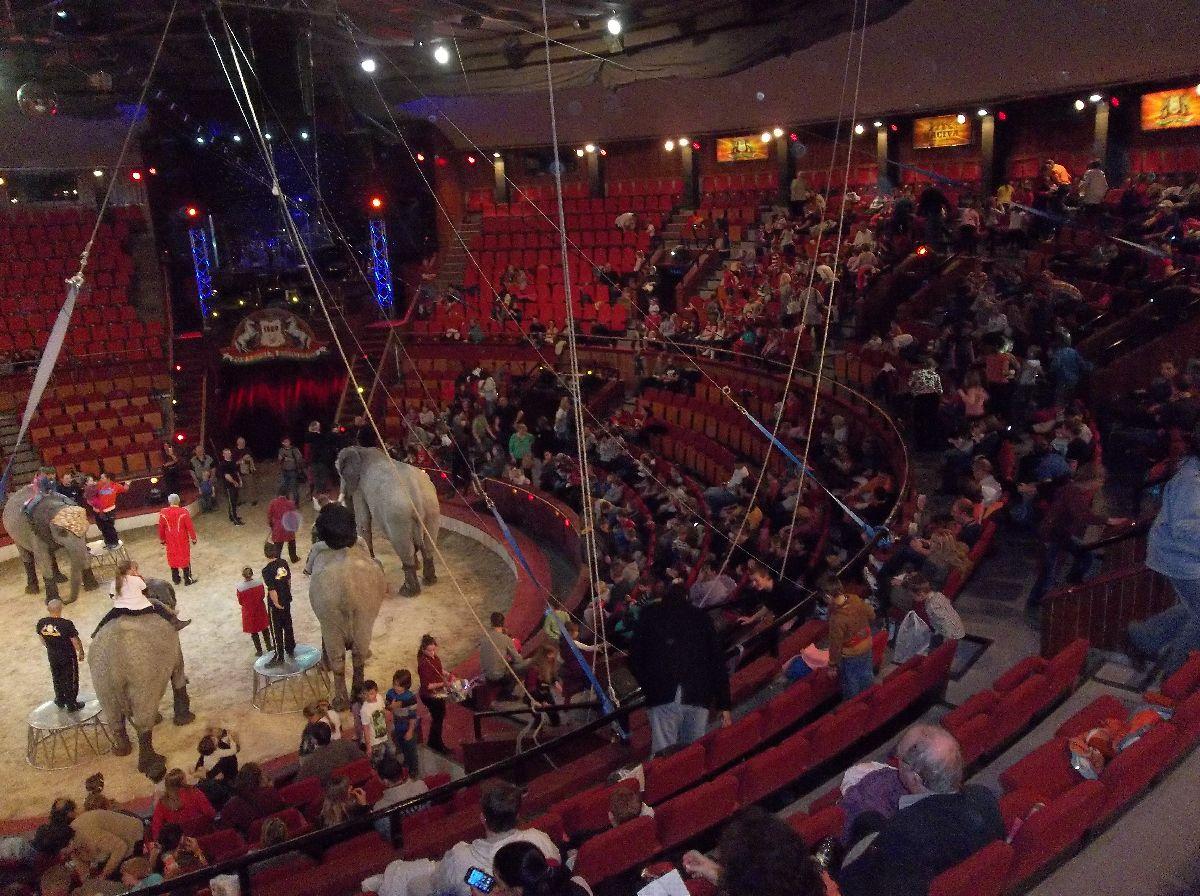 cirkusz014.jpg