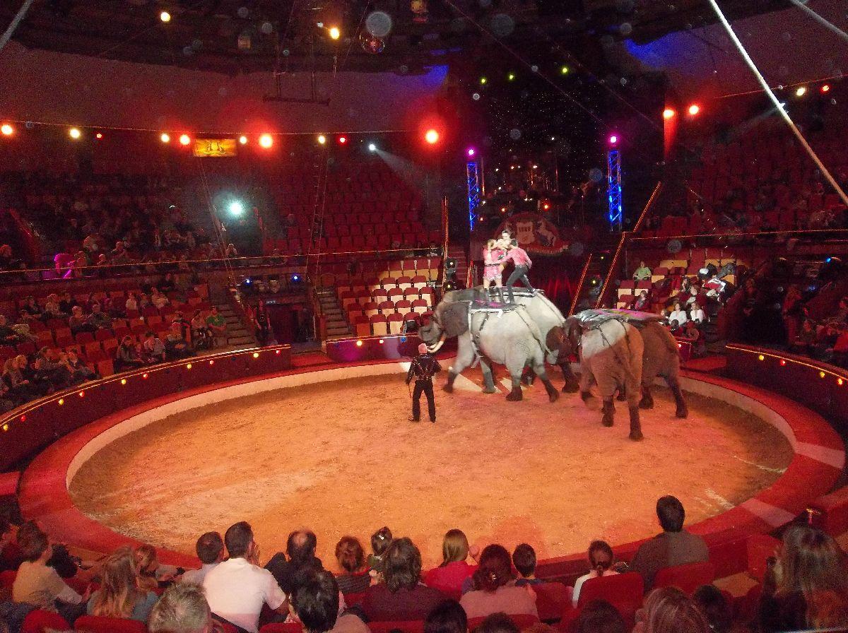 cirkusz017.jpg