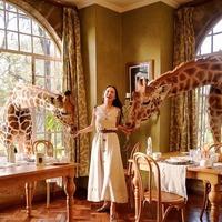 Ez a világ 5 legelképesztőbb szállodája! Te melyikben foglalnál szobát?