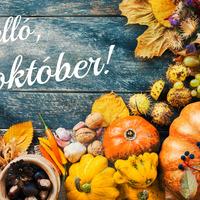 Tökölés, sajtevés, borivás – izgalmas lesz ez az október is!