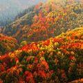 5 tipp, hogy az őszi szünetben se maradj programok nélkül