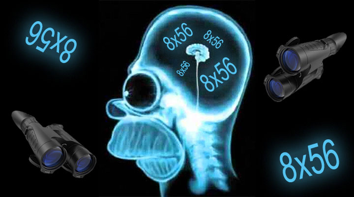 brainless1.jpg