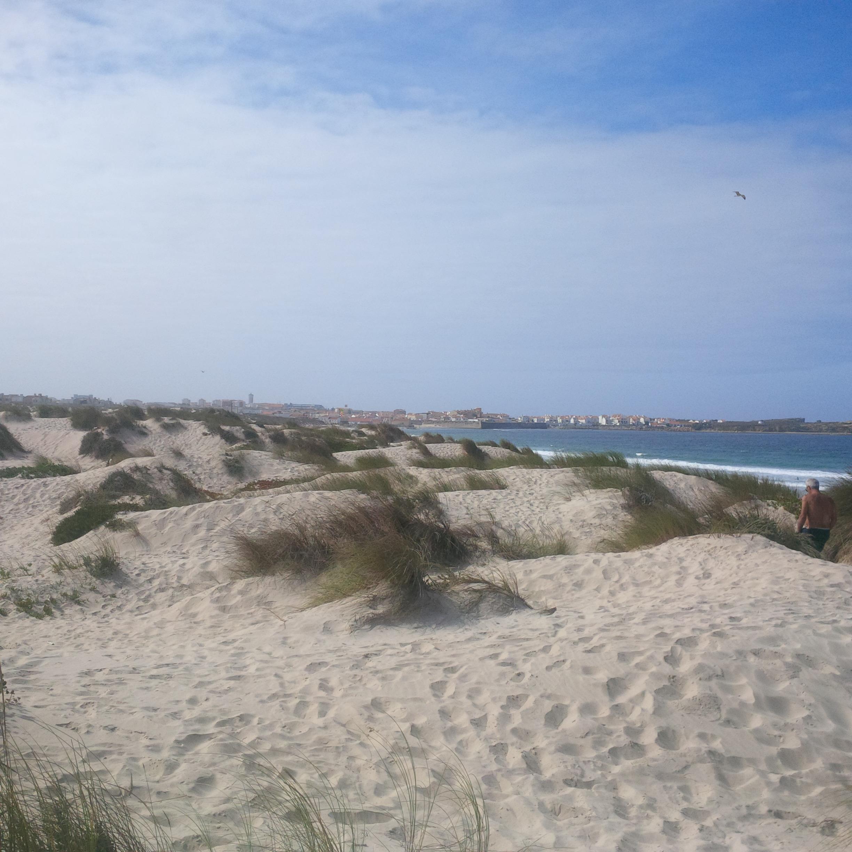 növényesedő homokbuckák az óceánparton