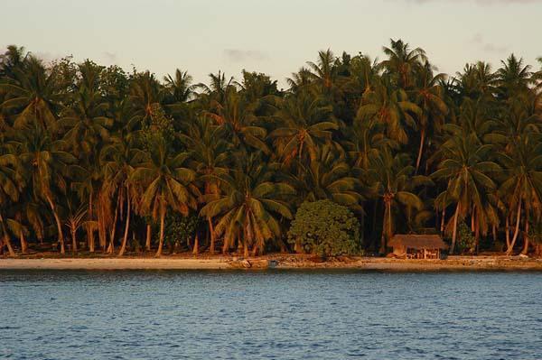 Egyedül egy szigeten 2.