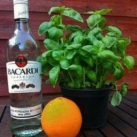 Koktélozás és narancsos, zöldfűszeres frissítő rummal