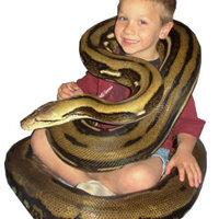 Pistike tedd le a kígyót és menj aludni!