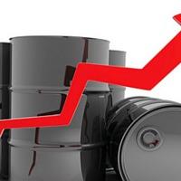 pénzügyi kockázatkezelés - védekezés az alapanyagárak emelkedésével szemben