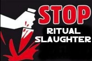 Stop-Ritual-Slaughter-300x200.jpg