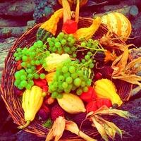 Így díszítsd a lakásod ősszel az évszak-elmélet alapján!