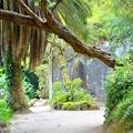 Titkos kert – szigorúan csak nőknek!