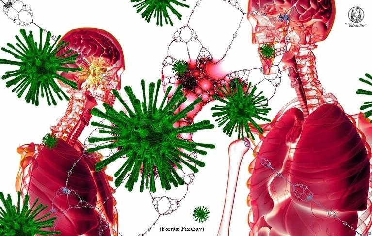 Koronavírus – egy út az önismerethez