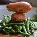 Tárkonyos zöldbableves erdei gombával