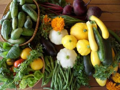 zöldségkosárkis01.jpg