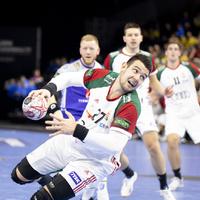 Magyarország - Svédország 30-33 (15-16)