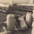 Időkapszula: NB I. 1982/83 9. forduló