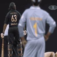 Látványsportok: Krikett