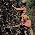 Időkapszula: NB I. 1983/84 Tavaszi zárás – Edzői gyorsmérleg 2.