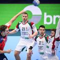 Magyarország - Norvégia 29-36 (12-20)