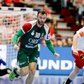 Magyarország - Dánia 24-24 (13-11)