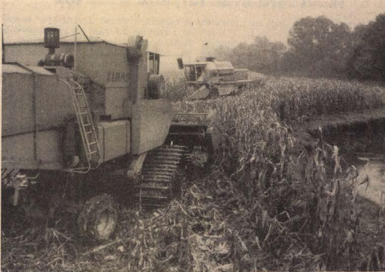 idokapszula_nb_i_1982_83_12_fordulo_kukoricabetakaritas.jpg
