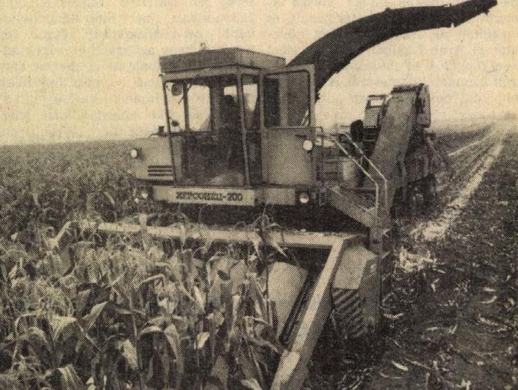 idokapszula_nb_i_1982_83_3_fordulo_kukoricabetakaritas.jpg