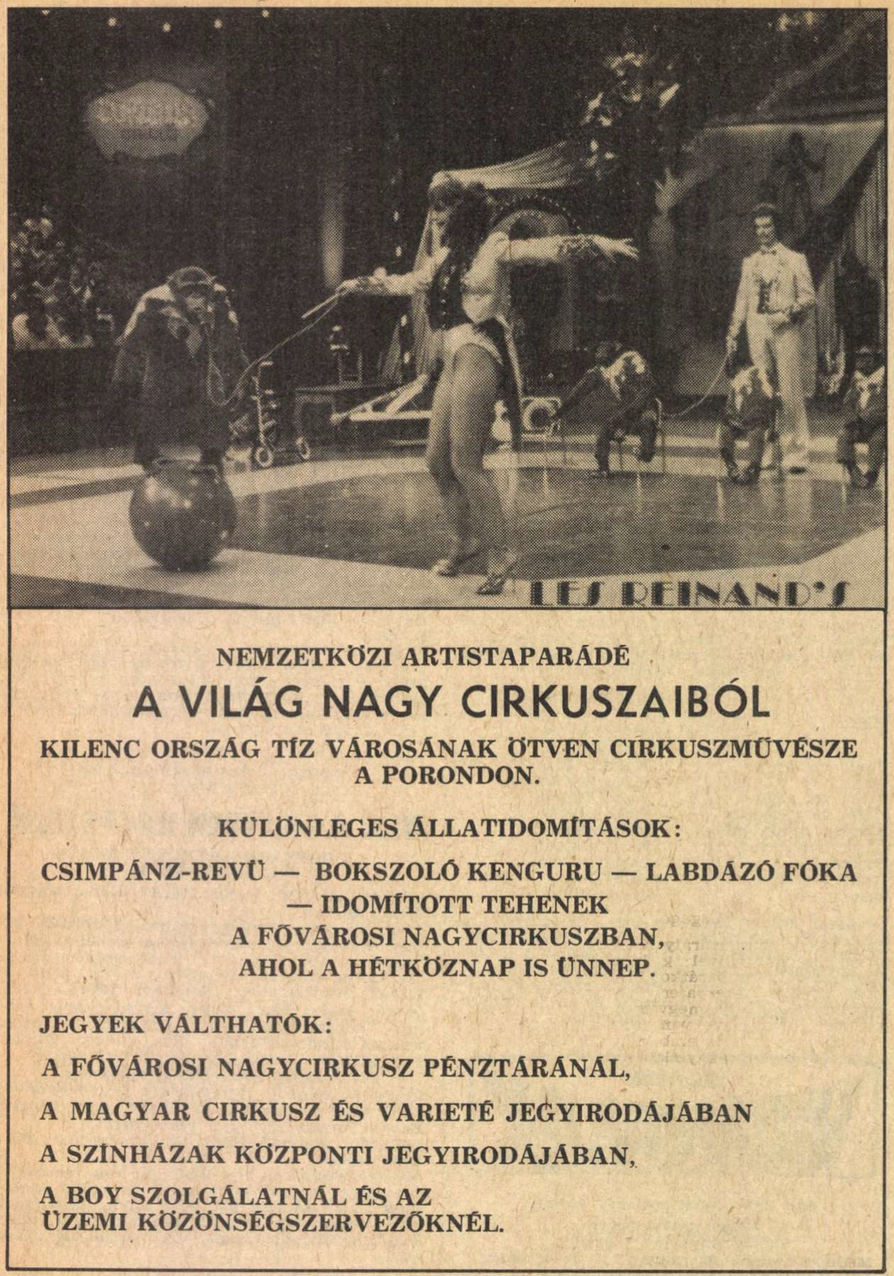 idokapszula_nb_i_1983_84_24_fordulo_reklam_2.jpg
