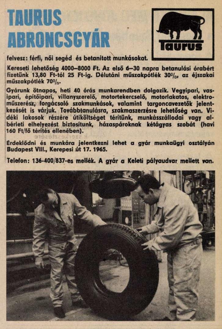 idokapszula_nb_i_1983_84_29_fordulo_allasajanlat_1.jpg