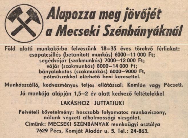 idokapszula_nb_i_1983_84_6_fordulo_allasajanlat.jpg