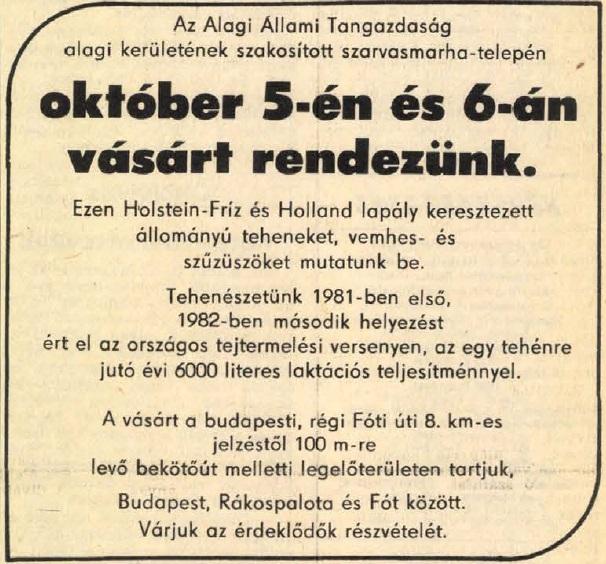 idokapszula_nb_i_1983_84_7_fordulo_reklam_2.jpg