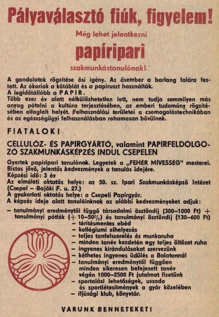idokapszula_nb_i_1983_84_belgium_magyarorszag_allasajanlat_2.jpg