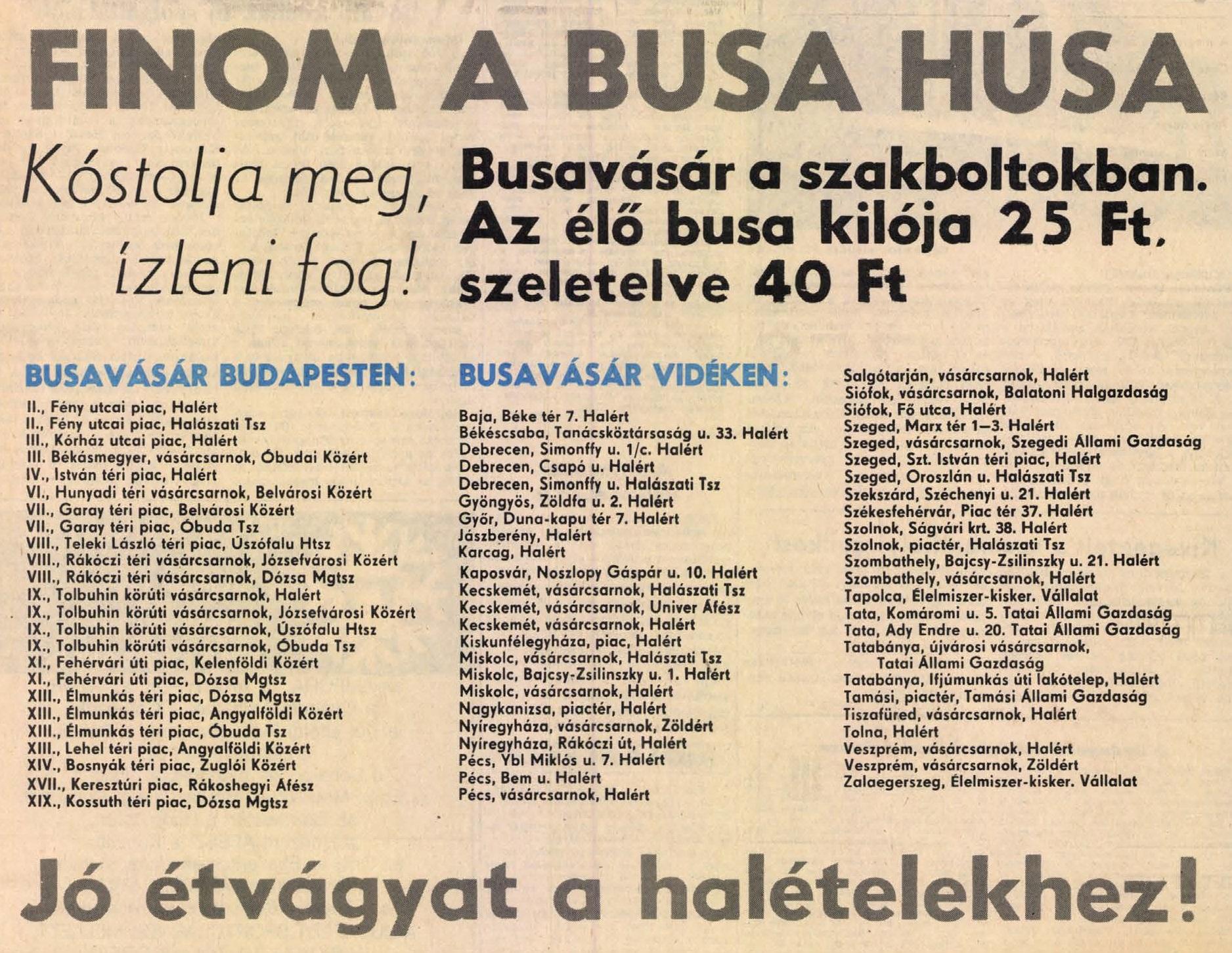 idokapszula_nb_i_1983_84_gorogorszag_magyarorszag_eb-selejtezo_reklam_2.jpg